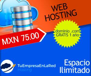 hosting-300x250-002.jpg